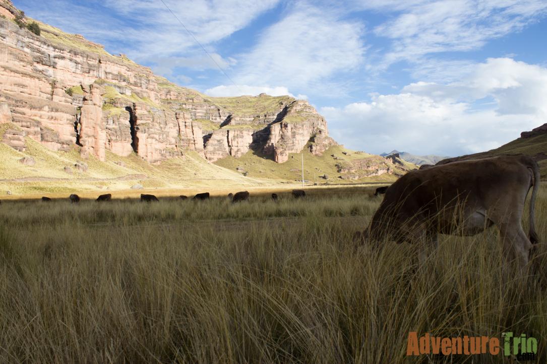 Peru Part 2-29